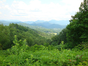 38 Acres with Mountain Views